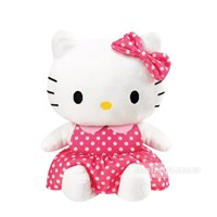 Be Hello Kitty vui ve Combi 114025