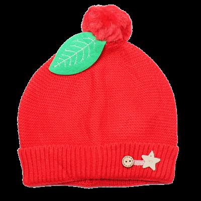 Mũ len trẻ em đính lá TE306 (6M+)
